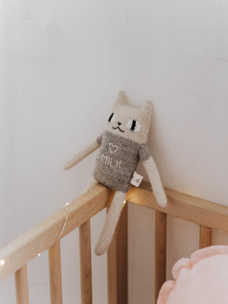 La Chambre de Baby Chat 8